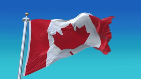 společenství : 4k looping Canada flag with flagpole waving in wind.A fully digital rendering,The animation loops at 20 seconds.flag 3D animation,CAN CA.