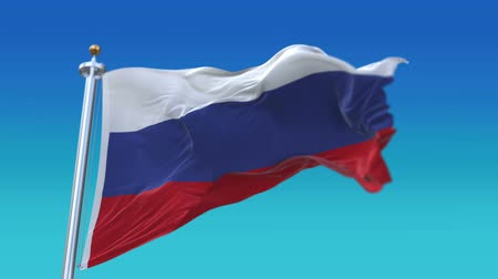 společenství : 4k looping Russia flag with flagpole waving in wind.A fully digital rendering,flag 3D animation,RUS.