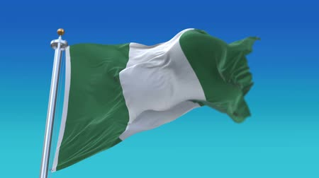 democracia : 4k looping Nigeria flag with flagpole waving in wind.A fully digital rendering,flag 3D animation,NGR. Vídeos