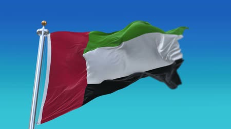 iberian : 4k looping United Arab Emirates flag with flagpole waving in wind.fully digital rendering,flag 3D animation,AE.