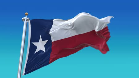 marş : seamless Texas Flag with flagpole waving in wind,fully digital rendering,flag 3D animation.