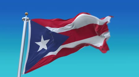associated : 4k Seamless Puerto Rico flag with flagpole waving in wind,fully digital rendering,The animation loops at 20 seconds,flag 3D animation. Stock Footage