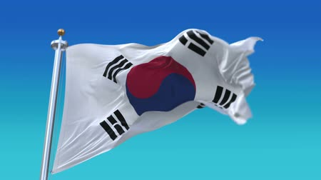 camsı : 4k Republic of Korea flag with flagpole waving in wind,fully digital rendering,Seamless loop with highly detailed fabric texture,flag 3D animation. Stok Video