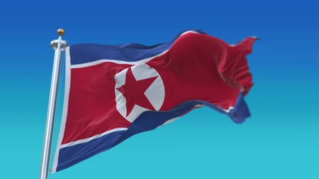 společenství : 4k North Korea flag with flagpole waving in wind,fully digital rendering,Seamless loop with highly detailed fabric texture,flag 3D animation.