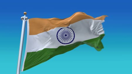 indie : 4k Seamless India flag with flagpole waving in wind,fully digital rendering,flag 3D animation. Wideo