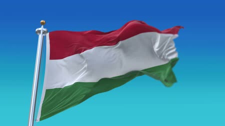 egemenlik : 4k Seamless hungary flag with flagpole waving in wind,fully digital rendering.flag 3D animation. Stok Video