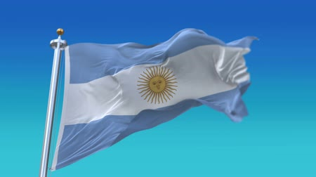 společenství : 4k Seamless Argentina flag with flagpole waving in wind,fully digital rendering.flag 3D animation.