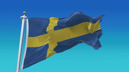 avrupa birliği : 4k Seamless Sweden flag waving in wind,fully digital rendering,flag 3D animation. Stok Video