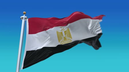 egyiptomi : 4k Seamless egypt flag waving in wind,fully digital rendering,flag 3D animation.