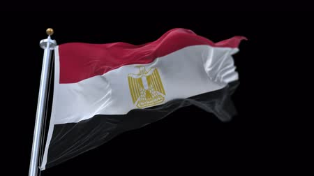 společenství : 4k seamless egypt flag waving in wind.A fully digital rendering,The animation loops at 20 seconds.flag 3D animation with alpha channel included.