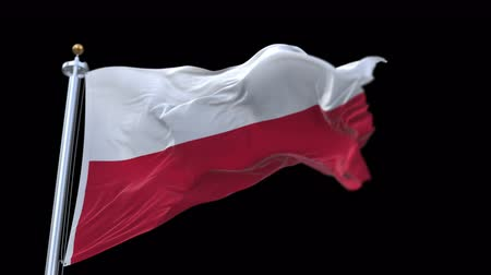 avrupa birliği : 4k seamless poland flag waving in wind.A fully digital rendering,The animation loops at 20 seconds.flag 3D animation with alpha channel included. Stok Video