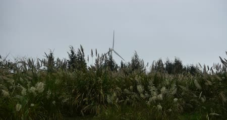 fenntartható : 4k countryside Windmill green energy,Wind turbines,energy production with clean and renewable energy.