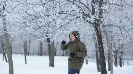 hamis : man throws off snow from tree branches in park Stock mozgókép