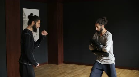 taiji : Brothers twins perform wushu punches in boxing paws