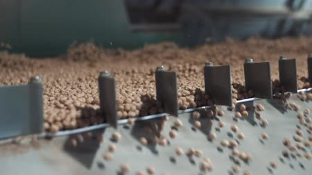 operators : Close-up shot of the process of cleaning the grain at the factory Stock Footage