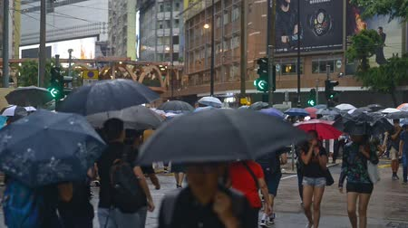 kruispunt : Hongkong, China - August 2019: crowded shopping street in asia. people in rain with umbrellas walking on pedestrian crossing road. hongkong, business, shops, commerce, crowded, rush hour concept