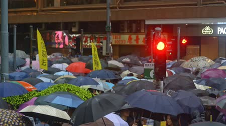 hong kong : Hongkong, China - August 2019: Color demonstration of five demands on street of asian city on summer day. People with umbrellas in hands are walking in central district of Hong Kong in rainy weather. Social event in metropolis. Concept: travel, freedom, m Vídeos