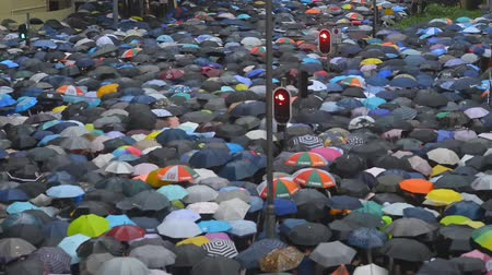crowded : Hongkong, China - August 2019: overcrowded pedestrian street filled with people with umbrellas, anonymous citizens walking during rush hour. busy casian city. business, crowded, busy, commerce concept. above view. Stock Footage