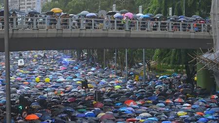 rewolucja : Hongkong, China - August 2019: Hongkong protesters gather for demonstration against face mask ban during heavy rain, using umbrellas for protection. china conflict demoracy concept. waiting on bridge above