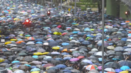 sistemas : Hongkong, China - August 2019: Massive crowds of protesters carry umbrellas while marching through city center during rain, peaceful assembly and anti government demonstrations. person taking picture with phone. Stock Footage