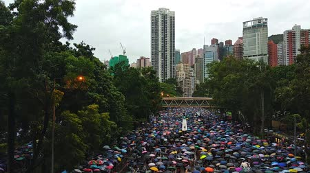 Hong Kong, China - August, 2019: People with umbrellas attend colorful demonstration of five demands on city street. Top view of adults walking along road of asian town with modern buildings and trees on day of solidarity. Concept: protest, democracy, pol