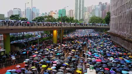 crowded : Hong Kong, China - August, 2019: People with umbrellas walking along Hong Kong street during demonstration on rainy day. Aerial view of adult protestants moving on road in city with bridge and modern buildings. Peaceful march in support of five demands in Stock Footage