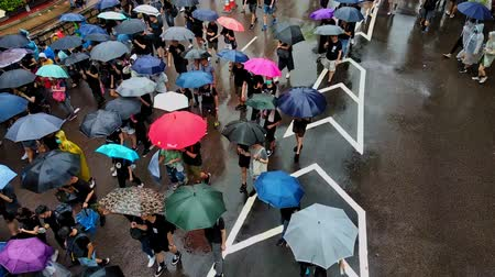 Hong Kong, China - August, 2019: People with umbrellas are walking along street of asian city during peaceful rally. Aerial view of adult men and women moving on road of metropolis, supporting demands and rights of citizens. Concept: demonstration, urban, Vidéos Libres De Droits