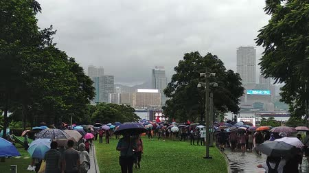 кампания : Hong Kong, China - August, 2019: Massive crowds of protesters walk through streets park, carrying umbrellas against the rain, in anti government demonstrations. walking on city street during meeting Стоковые видеозаписи