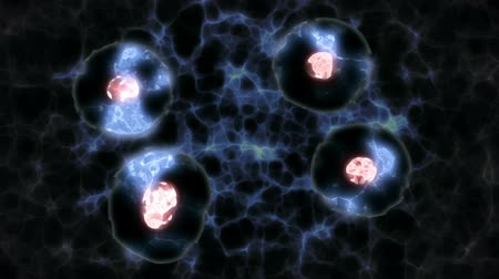 cell division : Animation of Dividing Cells on a Blue Abstract Background