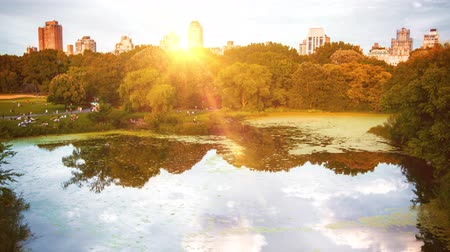 A slow motion camera above central park in New York with the sun behind the trees.