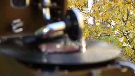 сбор : Stock Video Footage Lonely gramophone autumn outdoors On the balcony forgotten gramophone, no one seems to have not come. Autumn, playing old-time music, falling yellow leaves.