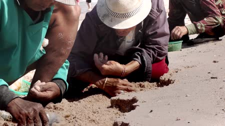 carrancudo : Stock Video Footage Slum Thai poor black women looking for shells  Women are dug out of the sand shells, folk craft, Thailand Fisherman, Fishing, Human, Outdoors, Harvesting. Chonburi province, tourists came quite a bit, so there is no money, so the food Stock Footage