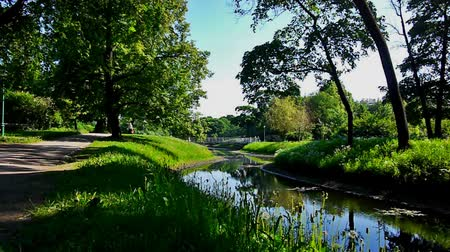 sporty zimowe : Green square with small river in a sunny summer day Wideo
