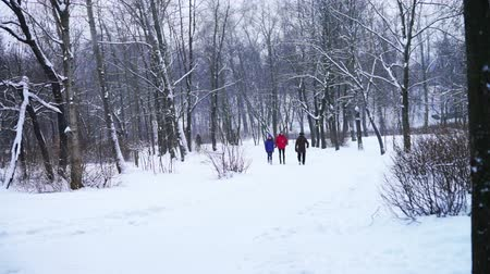 wooden path : PETROZAVODSK, RUSSIA - JANUARY 12, 2014:  People walking at uncleared path of city park in winter day. Stock Footage