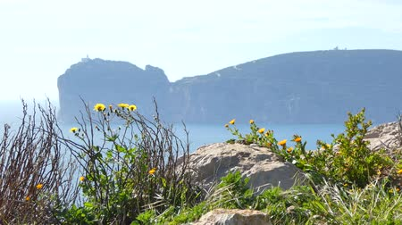 sardinie : View of Capo Caccia from Punta Giglio in sunny day of spring