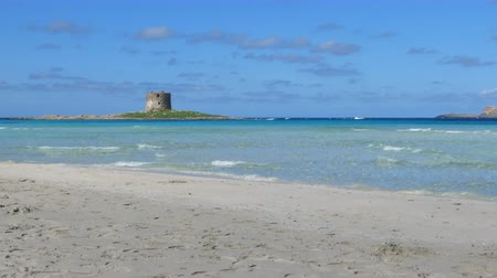 chlupatý : View of the Sardinian beach of Stintino - La Pelosa - in a sunny day with its ancient tower on the background
