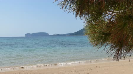 Сардиния : View of Capo Caccia from the desert beach of Mugoni in a sunny day Стоковые видеозаписи
