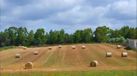 yerler : Time lapse of clouds over field with bales of hay Stok Video