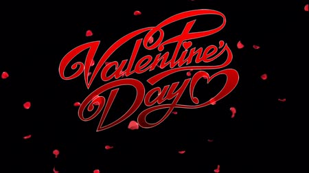 Animation red Text Valentine Day with Red flower petals background. Dostupné videozáznamy