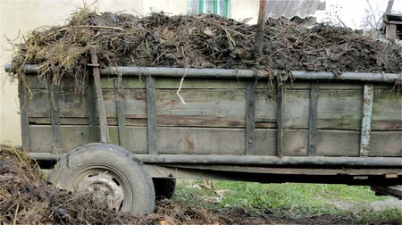 pus : wooden trailer with manure