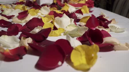 plated : Closeup of rose petals in the restaurant