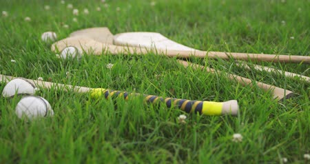 hurl : Dolly Left on Irish Hurls and Balls. camera dollies left on a group of irish hurleys and sliotars in a grass field Stock Footage