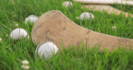 hurl : Hurleys and Sliotars in Grass Field. camera dollies left on a collection of irish hurleys and balls for the game of hurling Stock Footage