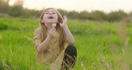 dmuchawiec : Young Girl Blows Dandelion Wish and Smile. a young girl is sitting in a grass meadow. She thinks about a wish then blows the dandelion towards the camera and smiles