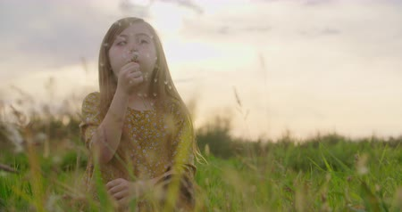 dmuchawiec : Young Girl Blows Dandelion Wish and Smile Sunset. a young girl is sitting in a grass meadow. She thinks about a wish then blows the dandelion towards the camera and smiles