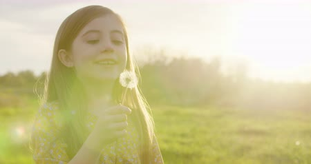 dmuchawiec : Young Girl Blows Dandelion Wish and Smile Sunset Close Up. a close up of someone handing a little girl a dandelion flower and she makes a wish and blows during sunset Wideo