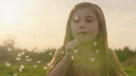 dmuchawiec : Young Girl Blows Dandelion at Sunset Slow Motion. close up of a young girl is grass meadow blowing on a dandelion flower in slow motion at sunset Wideo