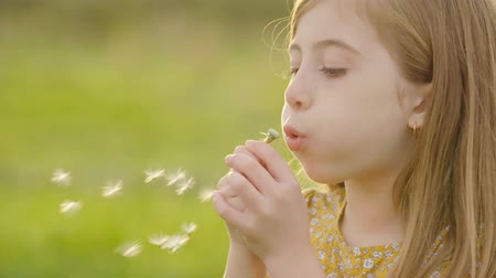 dmuchawiec : Young Girl Profile Blowing Dandelion Slow Motion. close up profile view of a young girl is grass meadow blowing on a dandelion flower in slow motion and smiling Wideo