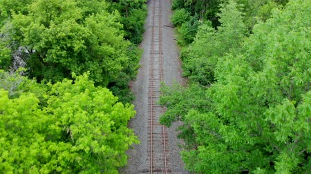 Train Tracks Empty Look Down Above Trees. moving down the empty train tracks lloking down from above the tree line