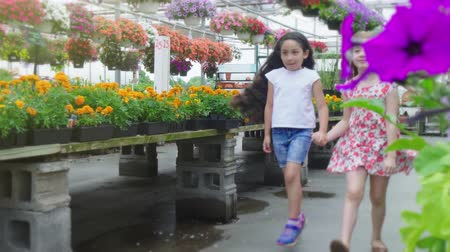 sera : Girls Skipping in Flower Nursery Shop. a slow motion view revealing two girls skipping down the aisle of a flower shop smiling Stok Video